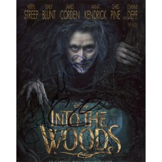 Into The Woods Autographed By 5 SIGNED IN PERSON 10x8 Photo