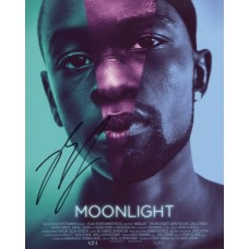 Barry Jenkins AUTOGRAPH Moonlight SIGNED IN PERSON 10x8 Photo - SOLD OUT