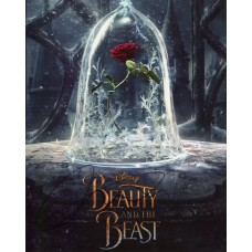 Luke Evans AUTOGRAPH Beauty & the Beast SIGNED IN PERSON 10x8 Photo