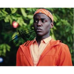 Ncuti Gatwa AUTOGRAPH Sex Education SIGNED IN PERSON 10x8 photo