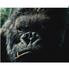 Andy Serkis AUTOGRAPH King Kong SIGNED IN PERSON 10x8 photo