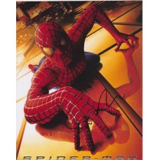 Sam Raimi AUTOGRAPH Spiderman SIGNED 10x8 Photo
