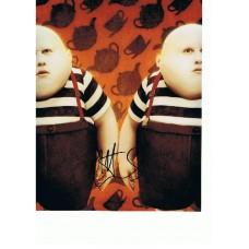 Matt Lucas AUTOGRAPH Alice In Wonderland SIGNED IN PERSON 10x8 photo